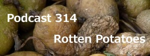 Podcast 314