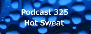 Podcast 325